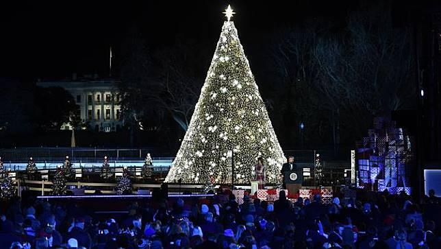 Pohon Natal di Gedung Putih