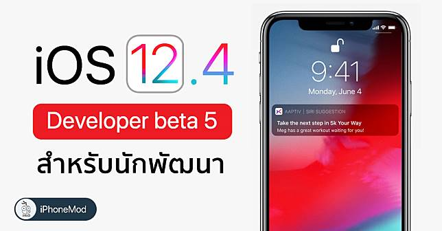 Ios 12 4 Developer Beta 5 Seed