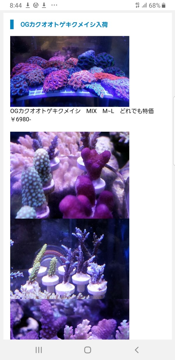 Screenshot_20191026-204417_Internet.jpg
