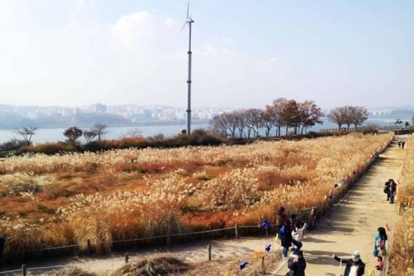 Destinasi Wisata Wajib di Korea Selatan