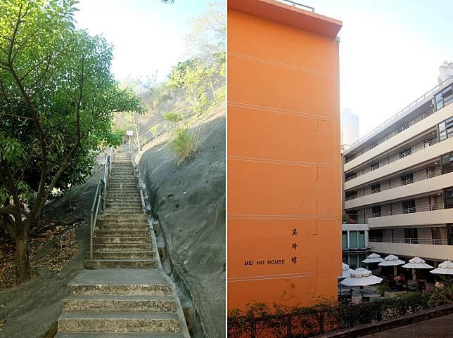 (左)眼前連綿的天梯將直達山頂,90.6米高也同樣考驗腳骨力;(右)回望身後可見美荷樓的另一面。