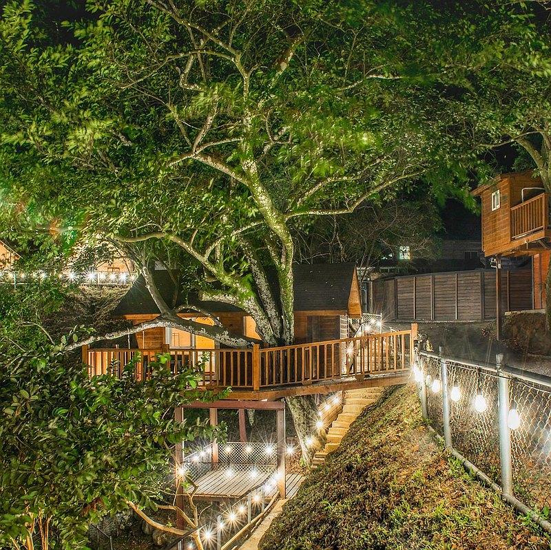 野漾莊園有白色豪華大帳棚、極致夢幻童話樹屋和隱身於簫楠樹林中的合掌屋! 每種房型均有獨立衛浴,並提供精緻餐點一泊四食。 望著山林風景、品嚐精緻頂級料理,孩子們開心在營區嬉戲,在茂盛的森林中漫步,享受清