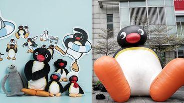 聖誕節跟企鵝家族Pingu一起過!巨大企鵝公仔、超萌扭蛋機樂園⋯40週年絕對不能錯過啊