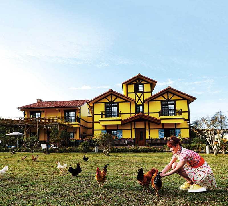 色彩鮮豔的黃色小屋咖啡莊園非常適合拍攝美照,屋主還在前院養雞,讓客人體驗餵雞樂趣。(圖/于魯光攝)