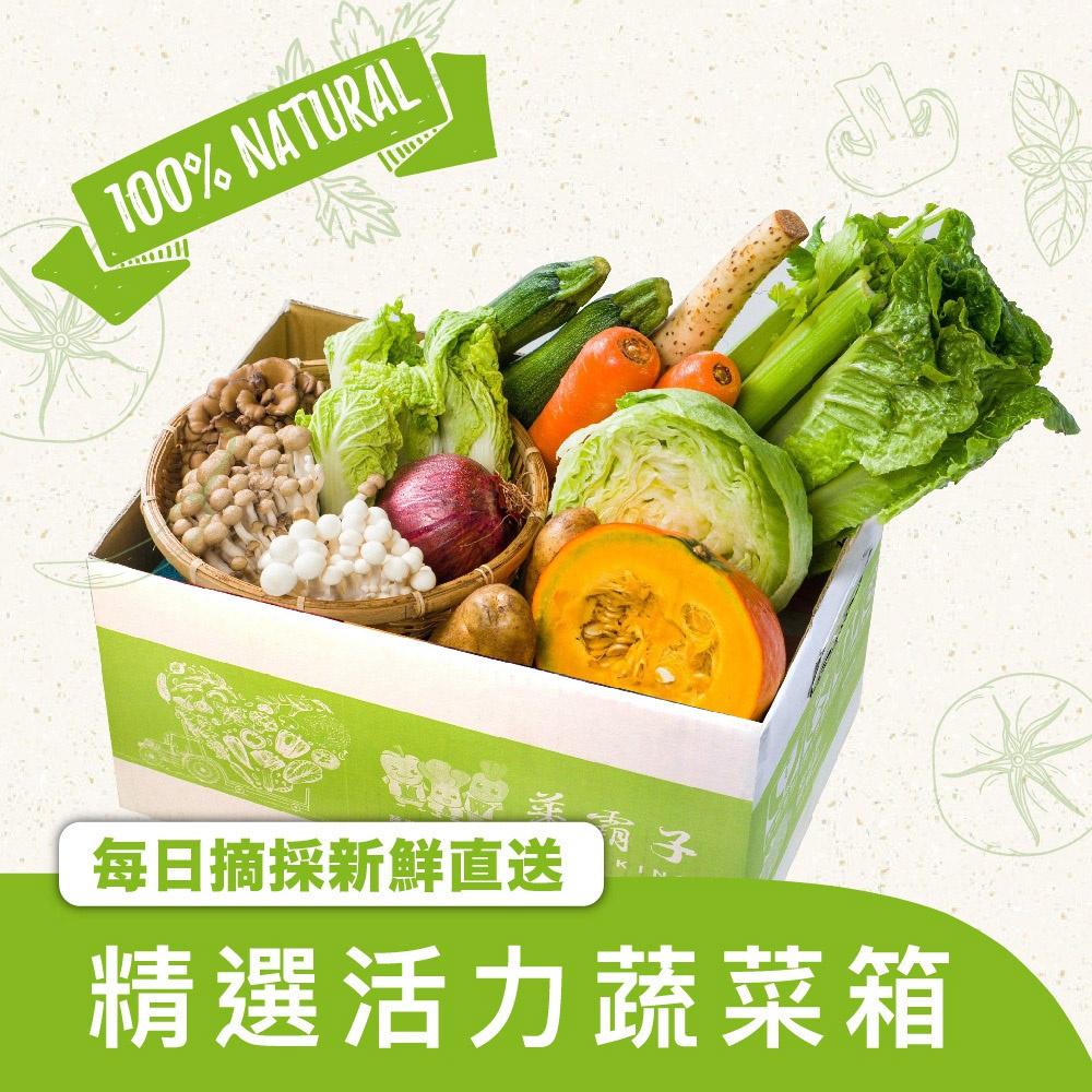 蝦皮生鮮 蔬菜箱 .蔬菜超值組合箱-組合隨機 菜霸子嚴選 假日正常送