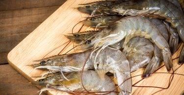 蝦子腸泥必須去掉嗎?吃蝦前必看的7個真相