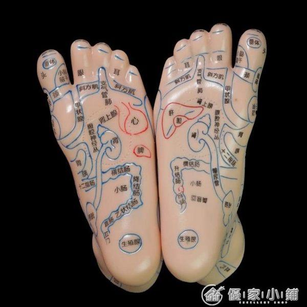 足部腳部腳底足底按摩足腳反射區模型足底三角雀工具 優家小鋪