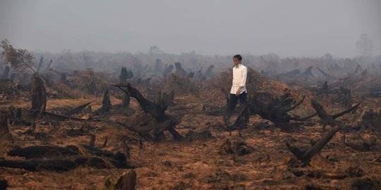 Jokowi tinjau kebakaran hutan di Kalimantan. ©AFP PHOTO/Romeo Gacad