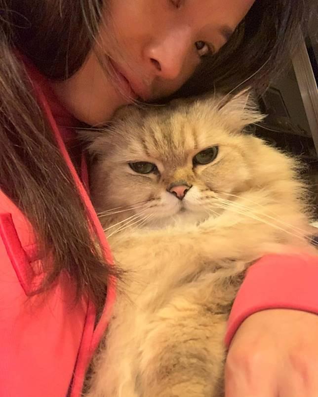 不過佢對愛貓嘅感情,係勝過治敏感嘅心!