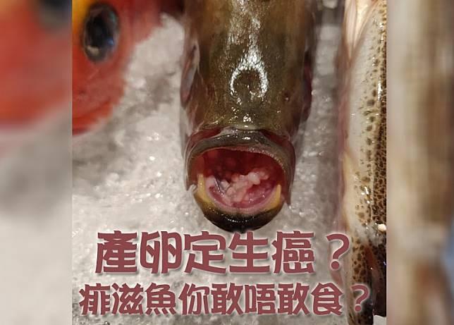 有網民在刺身店目擊滿口肉粒的怪魚,非常驚嚇。(互聯網)