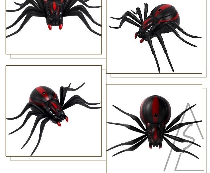 紅外線 遙控蜘蛛 遙控黑寡婦 昆蟲 蟑螂