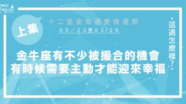 【03/23-03/29】十二星座每週愛情運勢 (上集) ~金牛座有不少被撮合的機會,有時候需要主動出擊才能迎來幸福!