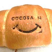 COCOSA B1