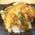 小野菜天丼 - 実際訪問したユーザーが直接撮影して投稿した歌舞伎町うどんいわもとQ 歌舞伎町店の写真のメニュー情報