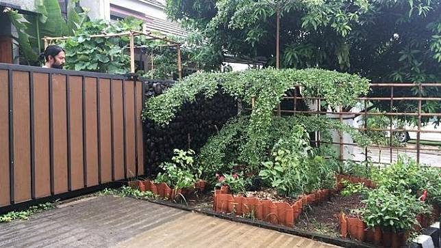 Kebun di rumah Rara Sekar. (Instagram/@rarasekar)