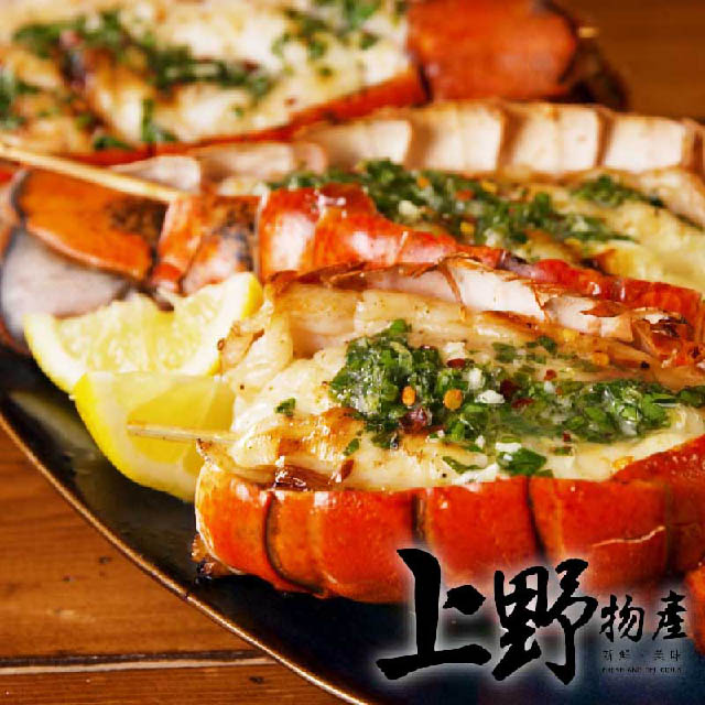 鮮嫩彈牙雪白滑嫩來自海洋的好味道龍蝦.蝦仁.鮭魚.螃蟹.料理包.冷凍