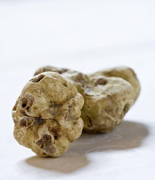 Rich Hongkonger pays US$132,000 for huge 1kg white truffle - at celebrity chef Umberto Bombana's 20th Alba charity auction