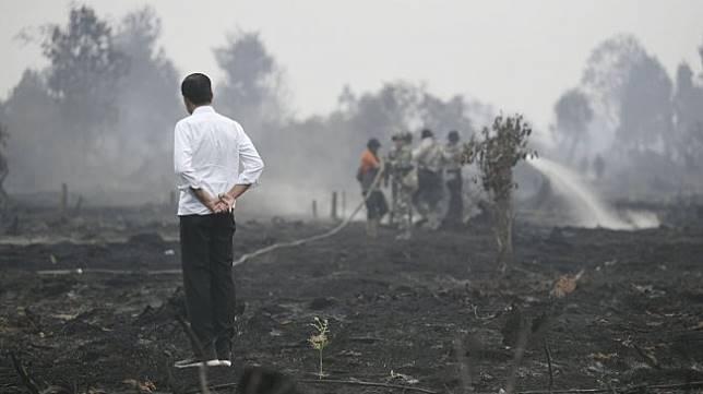 Presiden Joko Widodo meninjau penanganan kebakaran lahan di Desa Merbau, Kecamatan Bunut, Pelalawan, Riau, Selasa (17/9). [ANTARA FOTO/Puspa Perwitasari]