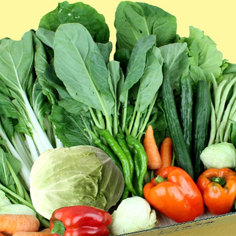 ★本週蔬菜:有機黑葉白菜(250g)、有機青松菜(250g)、有機小白菜(250g)、有機青江菜(250g)、有機荷葉白菜(250g)、 有機綠豆芽(150g)、有機黃豆芽(150g)、 有機黑豆芽(