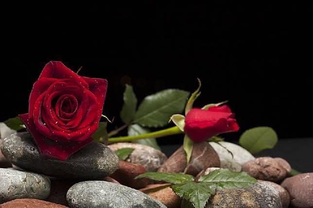 Hari Valentine Siapkan Hadiah Terbaik Sesuai Zodiak
