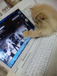 橘田いずみ公式blog「いずの餃子」-100530_211814.jpg