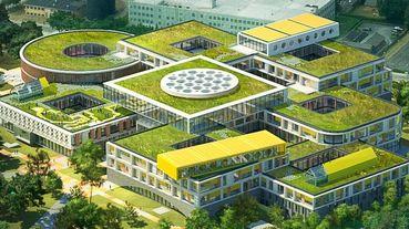 樂高LEGO Campus丹麥最新總部美呆!「森林裡的巨型積木屋」建築設計超夢幻、繽紛辦公空間童趣感炸裂