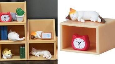 疊在一起超可愛!日本推出「棚猫」療癒系扭蛋 把整套書架懶貓咪買回家好幸福!