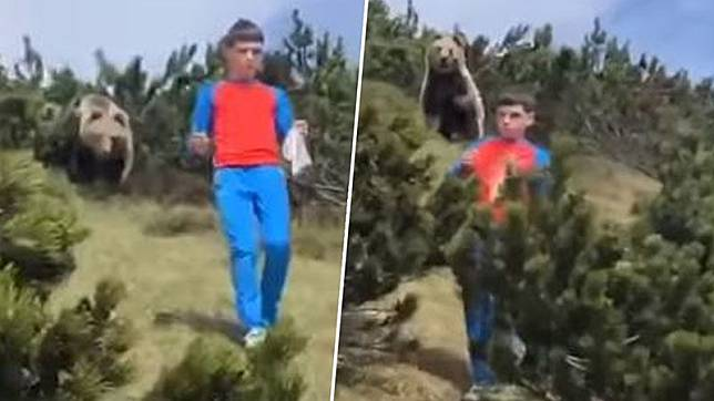 boy-stalked-by-bear-does-right-thing-1