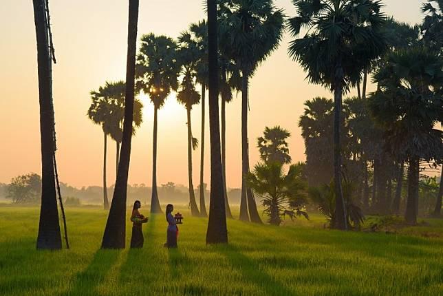 Women walk through a rice field in Ubud, Bali.