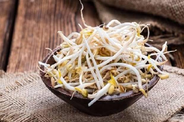 Makan Taoge Setiap Hari, Anda Dapatkan 5 Manfaat Kesehatan