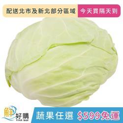 【鮮好購X蔬果任選$599免運】高麗菜800g±10g/顆