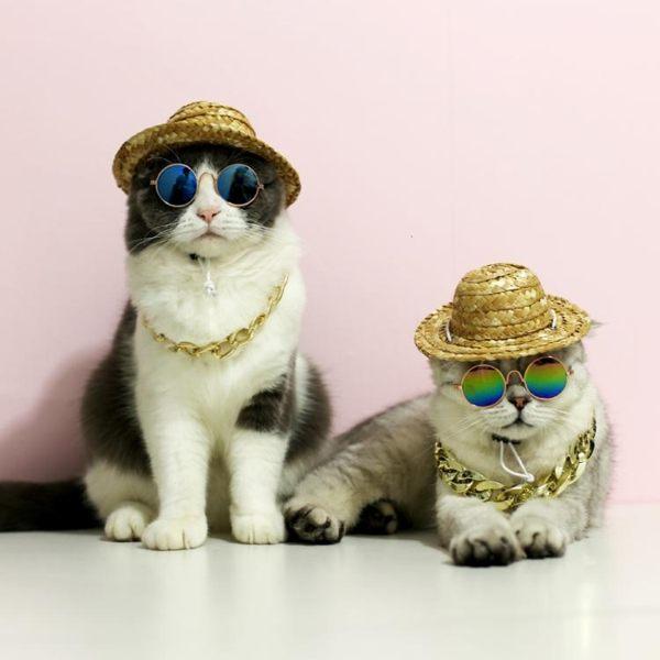 貓咪太陽鏡墨鏡眼鏡寵物飾品配飾