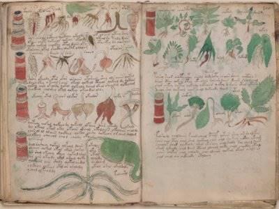 Kisah Naskah Voynich, Tulisan Misterius pada Abad Pertengahan