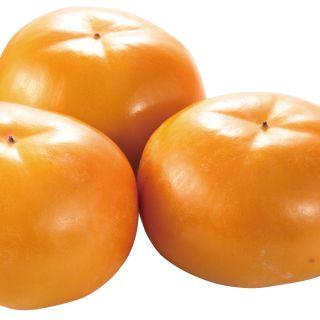 <福岡県産他国内産>富有柿