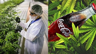 玩大了,可口可樂要推出「大麻可樂」?