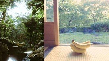 這個絕對超過 12 萬美元!日本網友興趣是「幫香蕉拍藝術照」,成品超有意境被推爆!