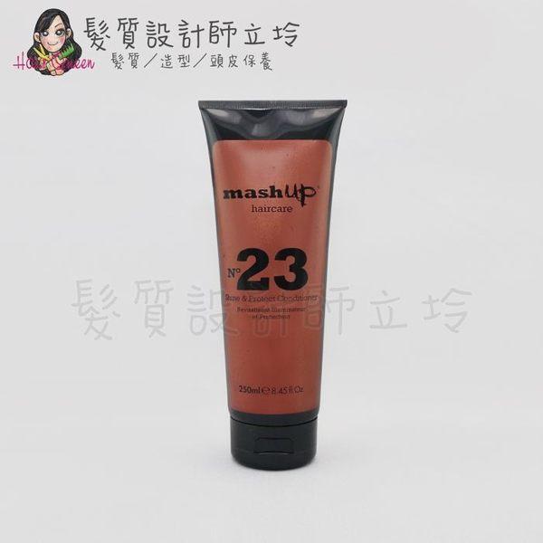 立坽『瞬間護髮』提碁公司貨 TIGI Mashup 日常保養系列 鎖色潤澤護髮素250ml HH04