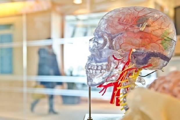 6 Kebiasaan Buruk yang Mempengaruhi Fungsi Otak