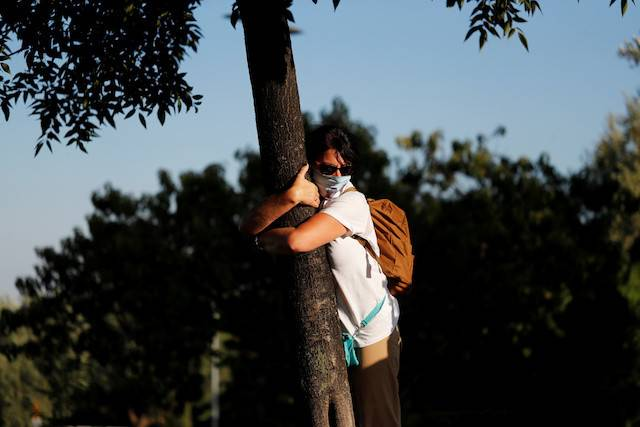 A woman takes part in a campaign by Israel's Nature and Parks Authority calling on people to join sightseeing tours and find comfort in tree hugging amid a spike in the COVID-19, in Jerusalem on Thursday.