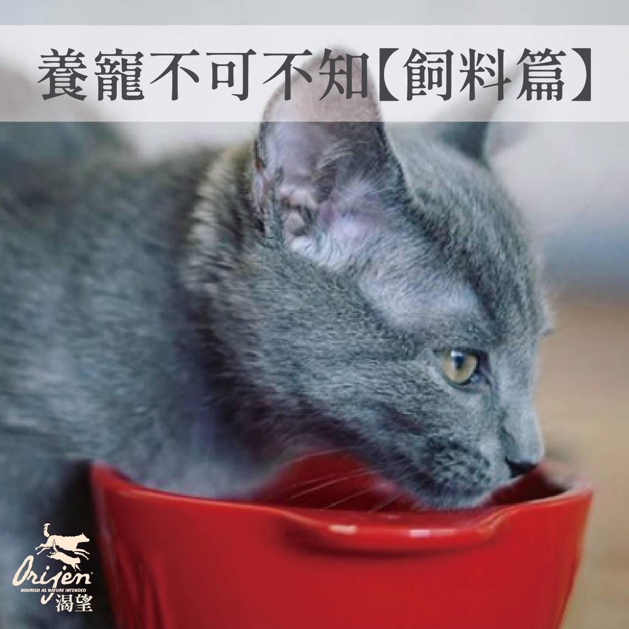 加拿大 Orijen 渴望 室內貓 低卡減肥 野牧鮮雞 1KG (原裝包裝)
