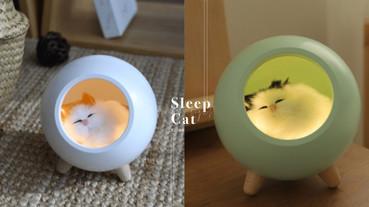 貓奴必收~韓國推出「熟睡小貓夜燈」太療癒,既然不能養真的貓咪,那讓他陪你睡覺吧!