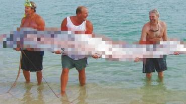 衝撃映像 傳說中的深海魚出現在淺灘!
