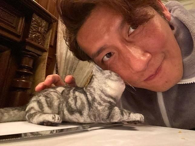 愛貓囝仔上年10月離開咗~