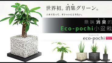除味消臭的Eco-pochi小盆栽