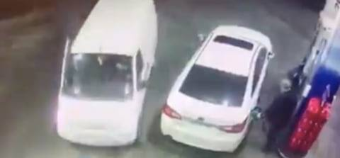 Viral, Gorila Hentikan Mobil Agar Keluarganya Bisa Menyeberang Jalan