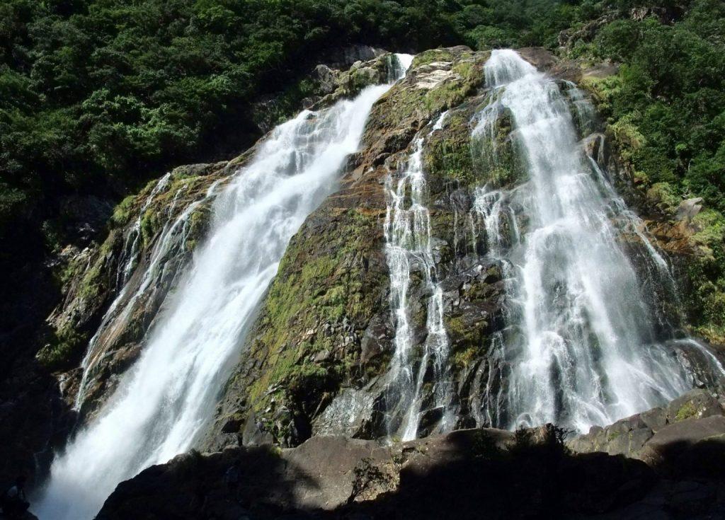 夏天就到屋久島享受神秘大自然!一窺世界遺產精選景點 5