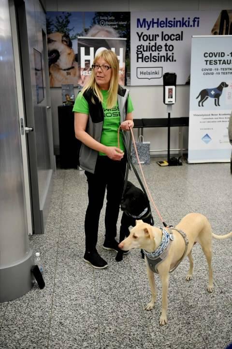 Anjing Pelacak yang Digunakan Bandara Finlandia untuk Deteksi Corona