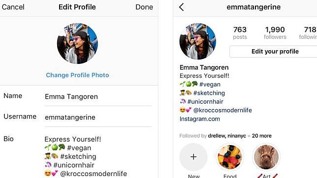 Contoh Bio Instagram Yang Menarik Followers Bahasa Indonesia