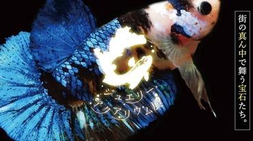 【2019年埼玉】永旺 Lake Town Kaze限時登場!寶石水族咖啡廳給你視覺魔幻饗宴