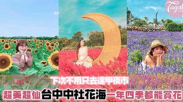 台中只知道逢甲夜市?一生四季都能賞花的中社花海了解一下!被花圍繞的感覺如走進歐洲莊園~